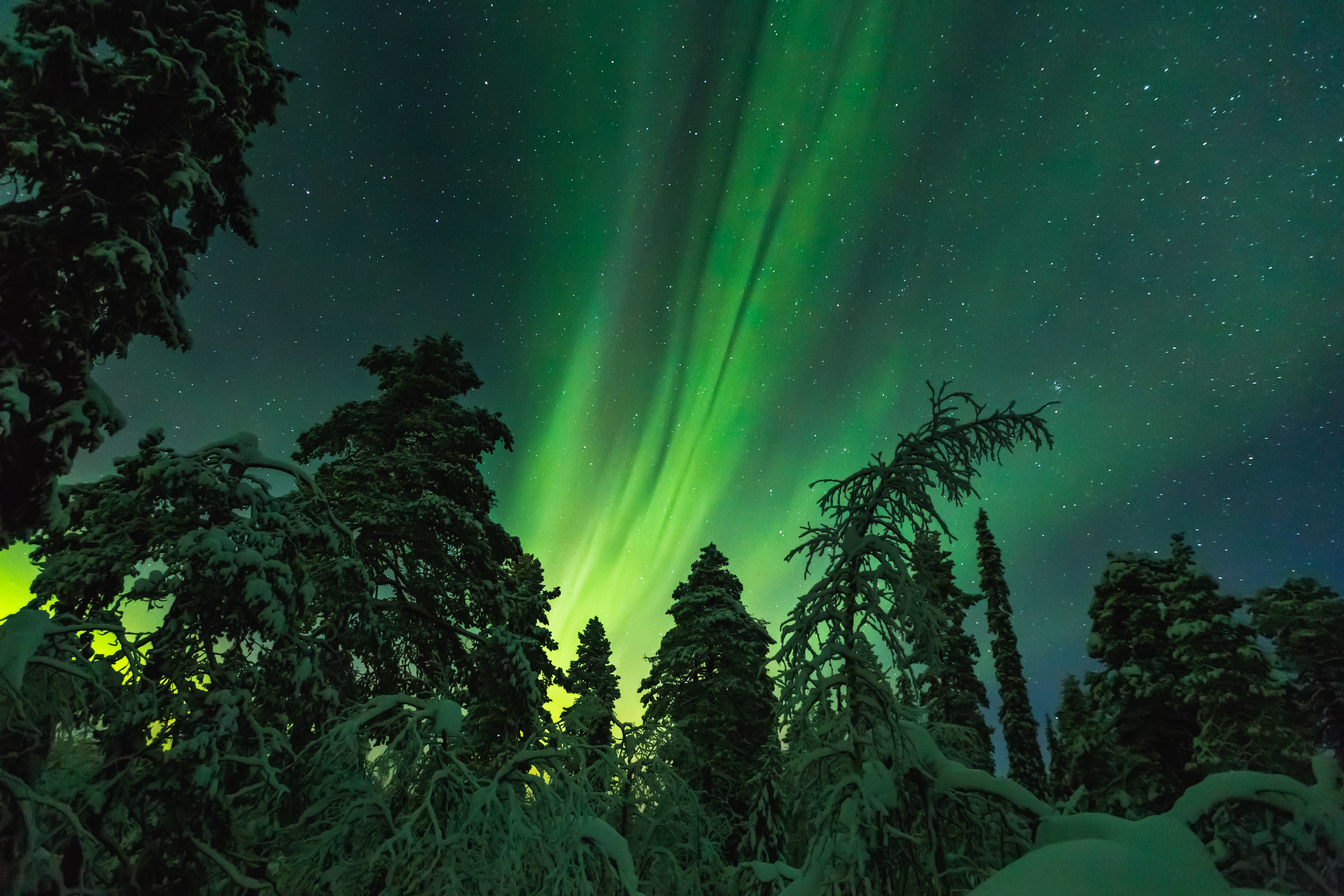 Northern lights/Finnish Lapland